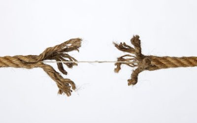 Ontbinding arbeidsovereenkomst met ex-vrouw van dga